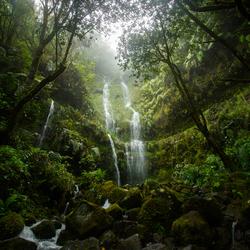 Madeira your beautiful