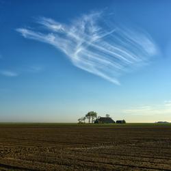 In de polder wonen,