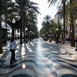 Alicante boulevard