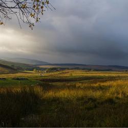 Herfst Northumberland.