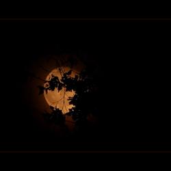 zie de maan schijnt .....