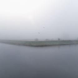 Mist in het Bossche Broek