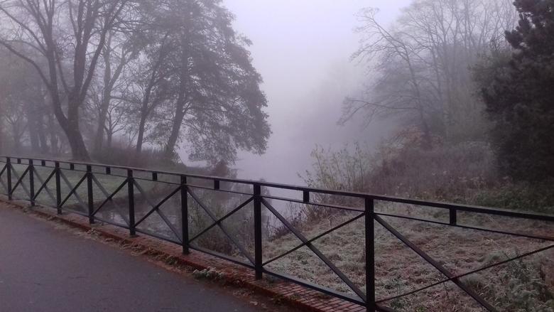 Mist in het Zuiderpark