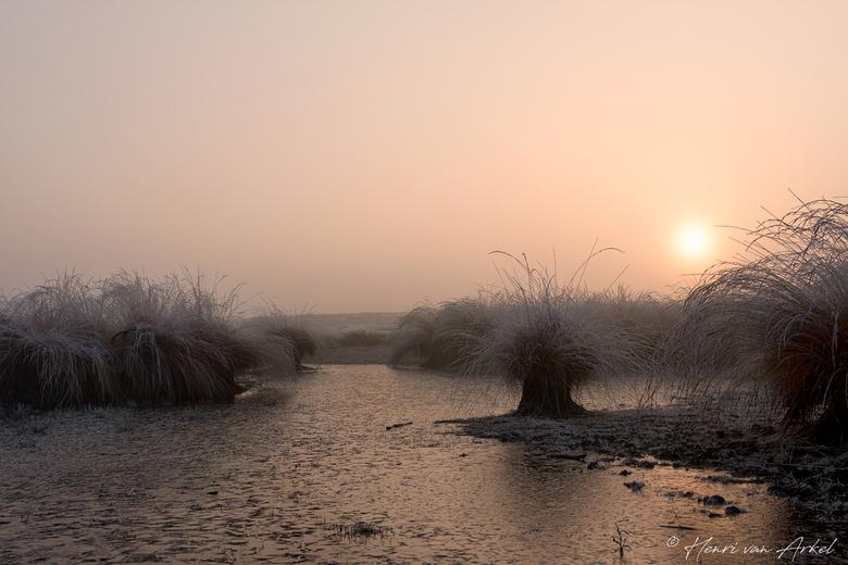 Wollegrasven - Renderklippen - 4 november 2018 - Een koude zondagochtend in alle vroegte op de Renderklippen met mist en rijp. Een klein beetje water