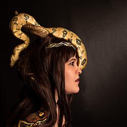 Fantasy & Reptiles