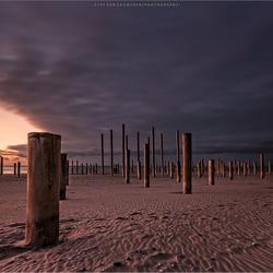 Palendorp strand Petten