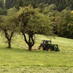 groener dan groen is haast niet meer mogelijk.