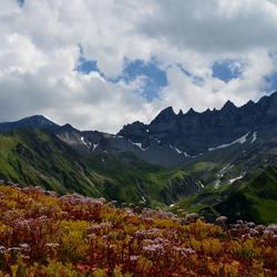 Tschinglen-Alp, Elm.