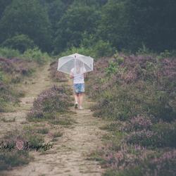 Rain is like confetti of the sky