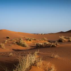 Maroc 35