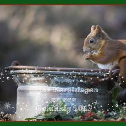 Fijne kerstdagen en een mooi, gezond en fotogeniek 2017