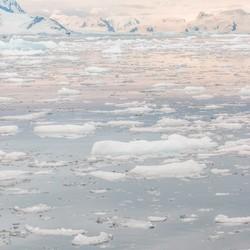 Magisch Antarctica