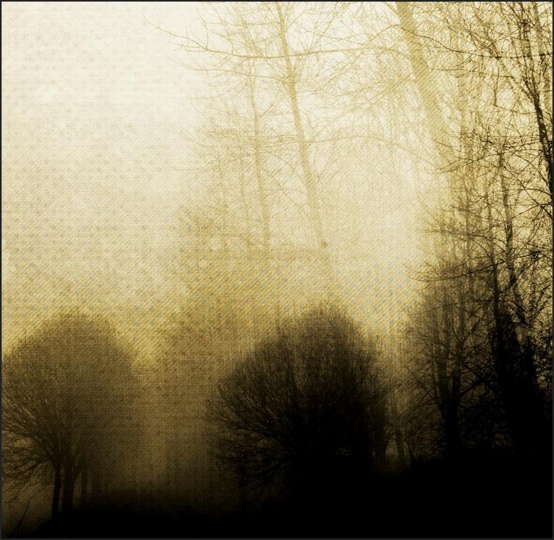 """Into the woods..... - Om in de trillersfeer te blijven.....<br /> Dank jullie wel voor de reacties op men vorige uploads <img  src=""""/images/smileys/s"""