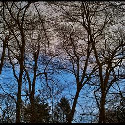 Grijs blauw