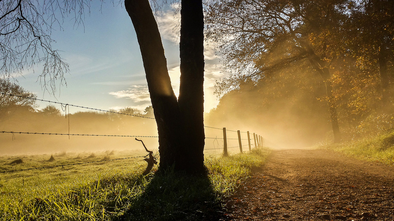 De zon schijnt - Na een regenachtige zondag schijnt maandag de zon gelukkig weer. Het was prachtig 's morgens. Helaas had ik alleen mijn mobieltj