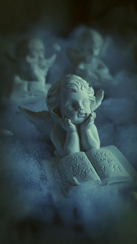 De dromer.... - Dromend van een witte Kerst?