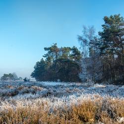 Bevroren Heide
