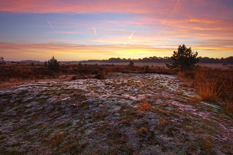 lichtere voorgrond drunense duinen bevroren mos2 - Ik kreeg als (terechte) reactie op deze foto dat de voorgrond te donker is. <br /> Vandaar mijn 2e