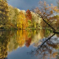 Herfst in 't Rivierenhof
