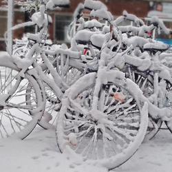 Witte fietsen