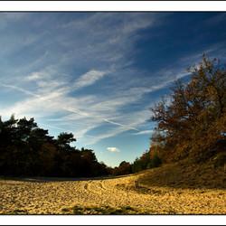 drunense duinen.4