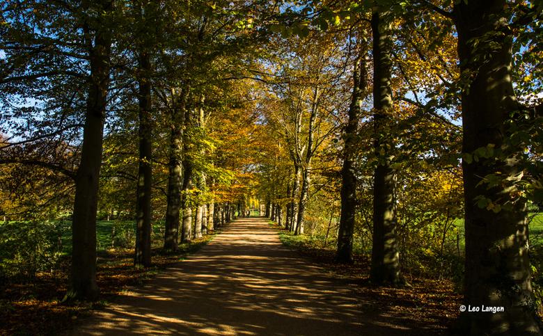 Herfst bij Schaloen, Valkenburg - Een iets oudere foto.<br /> <br /> Iedereen heel veel dank voor de mooie reacties op de herfstbladeren van een beu