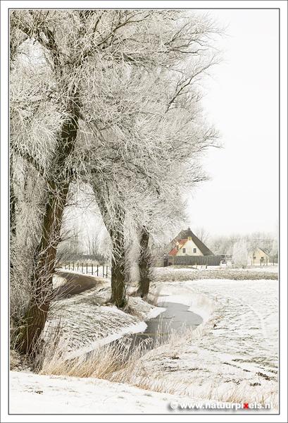 Oudwoude Friesland - Foto van een winters Oudwoude (Aldwâld) te Friesland.