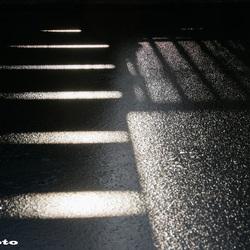 Tegenlicht2