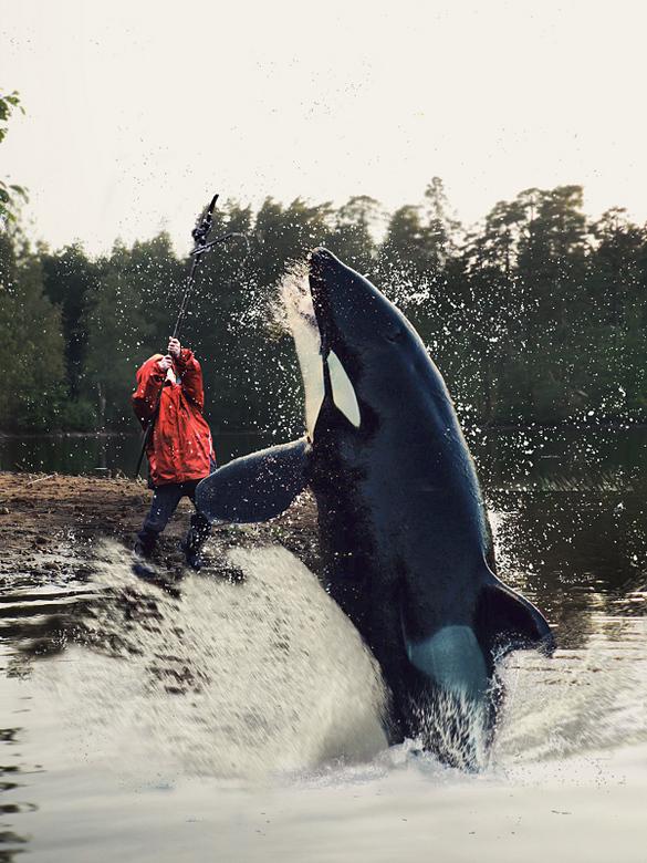 Orka opgehengeld - Maar dán zul je schrikken als je ineens een orka aan je hengeltje hebt! <br /> Mijn pleegbroertje Tomas deinst niet terug voor zo&