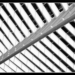 Fast lines 07