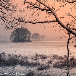 A wintertale