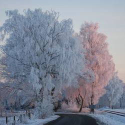 Winterlandschap Haaksbergen