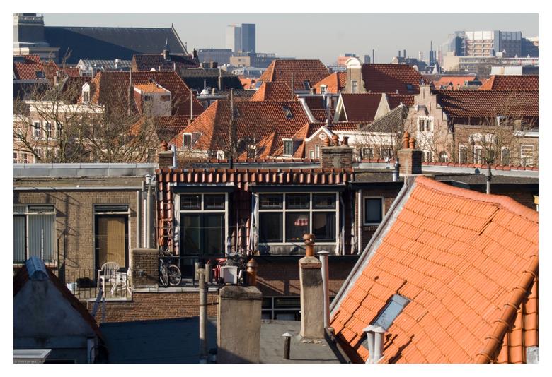 Leidsche Daken - Genomen vanaf de Burcht in Leiden. Hier sta je op een hoog punt en kun je de daken van Leiden fotograferen. Soms wordt er op die dake