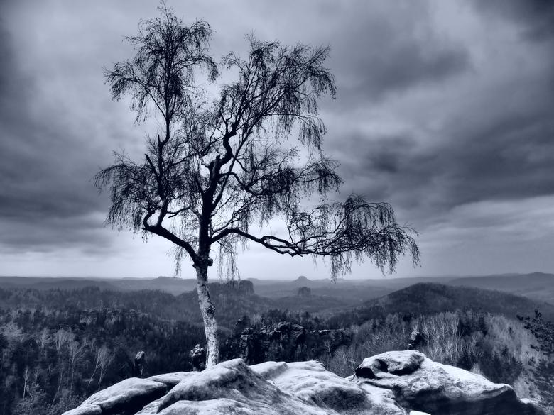 Land of Morder... - Wat doe je als er geen licht is? Dan maar spelen met één van de ART filters op mijn camera om een moody plaatje te schieten...