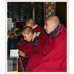 biddende monniken in Bhutan