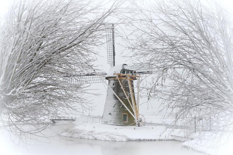 stevenshofmolen in de sneeuw 10x15 -