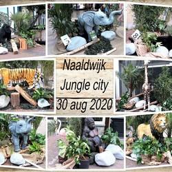 collage  Naaldwijk Jungle City  30 aug 2020