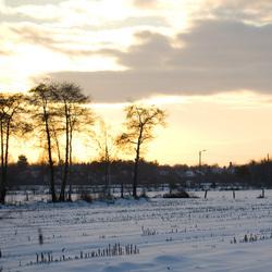 Afsluiter van een mooie winterse wandeling!