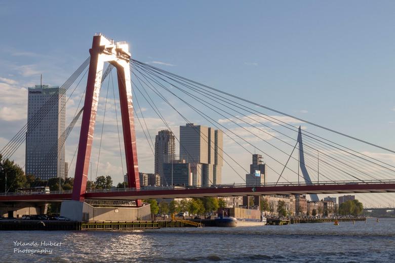 Willemsbrug - De Willemsbrug Rotterdam vanaf het water.