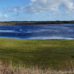 Texel mooie plek in de duinen voor vogels