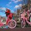 Fleurige fietsen