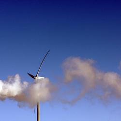 windturbine in rook