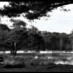 Noord Brabant.....