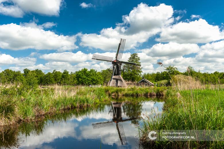 Spinnenkop in de Wieden - Soms heb je van die plekken waarbij het lijkt of je een Nederlands schilderij inloopt.