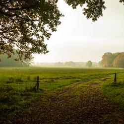 Herfst in Vilsteren