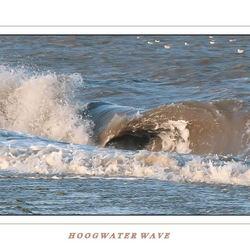 Hoogwater Wave 3