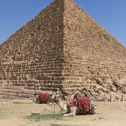 Dromedarissen bij piramide
