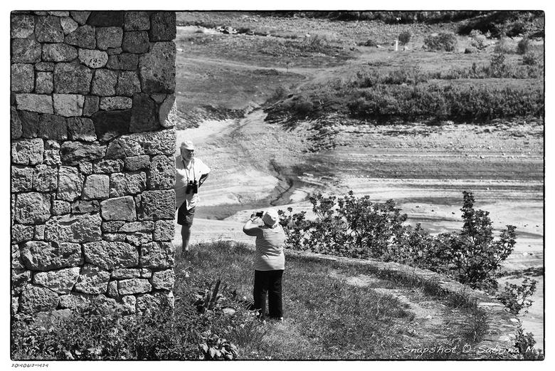 Snapshot - Geniepig achter het hoekje even een fotootje maken. <br />