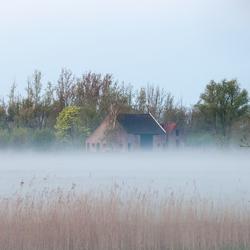 Ergens in de Biesbosch