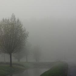 Dichte mist